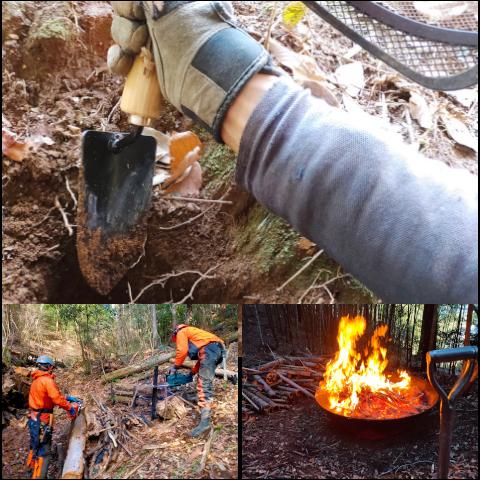 森づくり活動